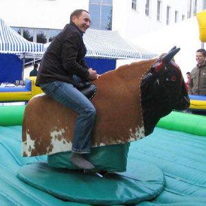 Symulator byk rodeo buffalo