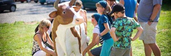 Organizacja imprez - sztuczna krowa do dojenia
