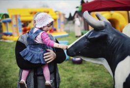 sztuczna-krowa-organizacja-imprez